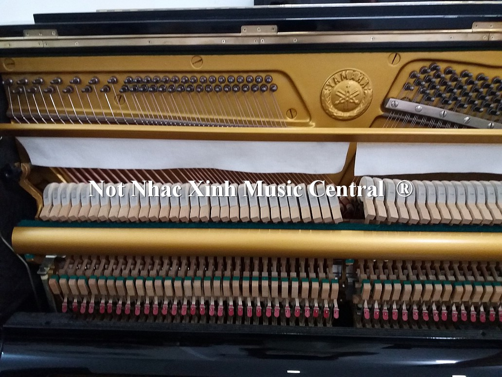 Đàn piano cơ Yamaha U1G